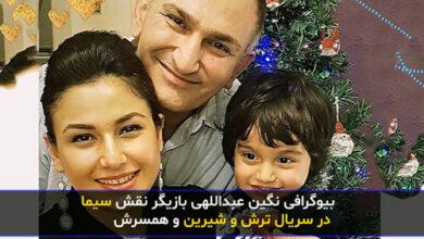 negin abdollahi 5 390x220 - بیوگرافی «نگین عبداللهی» و همسر و فرزندانش با عکس جدید + زندگینامه و فیلم شناسی