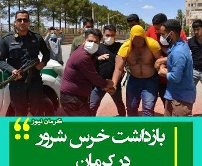 خرس شرور کرمان کیست + لحظه دستگیری
