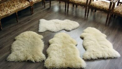 54066 210 390x220 - طریقه خشک کردن پوست گوسفند