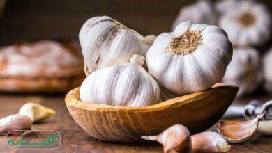 interpretation dream garlic hazrat yousef 1 390x220 - تعبیر خواب سیر از حضرت یوسف