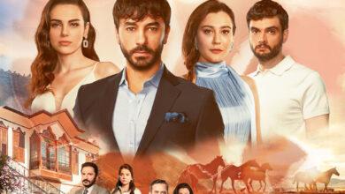 kalpyarasipCQlLhoirL4W1 390x220 - دانلود سریال ترکی Kalp Yarasi ( زخم قلب ) با زیرنویس فارسی چسبیده
