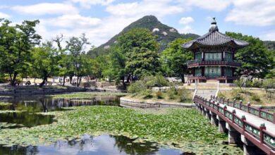 kore 19 390x220 - ۲۱ تا از برترین مکان های دیدنی کره جنوبی