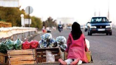 57142 175 390x220 - شهروندان باید با کودکان کار چگونه برخورد کنند؟ +فیلم