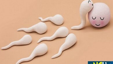 667765 110 390x220 - کدام مواد غذایی کیفیت اسپرم را بهتر میکند؟