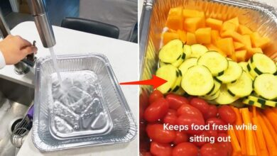 608c186234af8d001859a239 390x220 - ترفند: خنک نگه داشتن مواد غذایی بیرون از یخچال + ویدئو